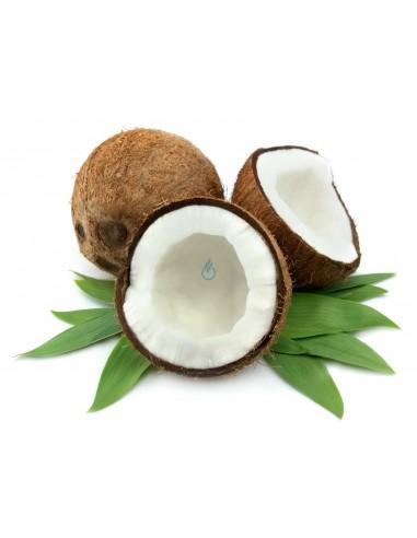 Coco (10ml)