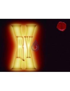 RY-X de Vap Fip